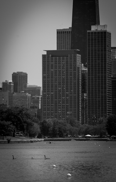 2017 Chicago Sprints (103 of 254).jpg