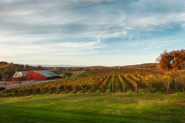 Barboursville Winery