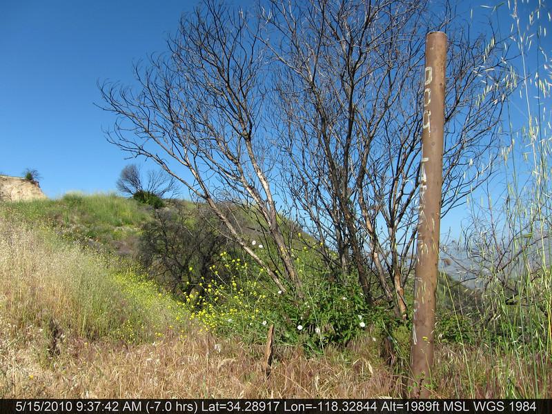 20100515003-Doc Larson Trail Recon.JPG