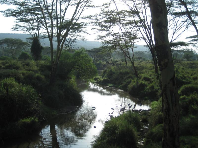 Tanzania14-3567.jpg
