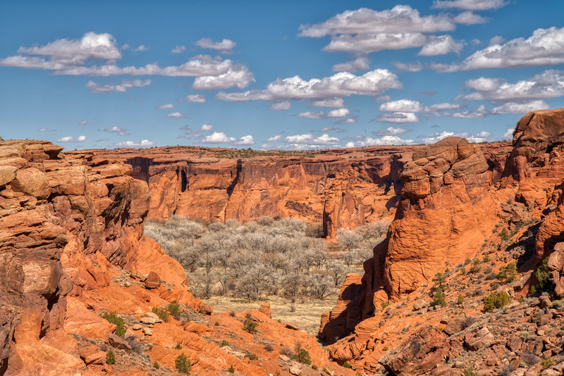 Canyon de Chelly 2020-1.jpg