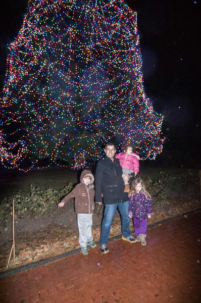 Toledo Zoo Light Show - 2014 - _CAI4528.jpg