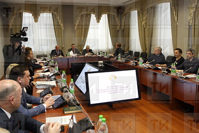 15.11.2019 Заседание Комитета ГС РТ по строительству и местному самоуправлению (Александр Эшкинин)