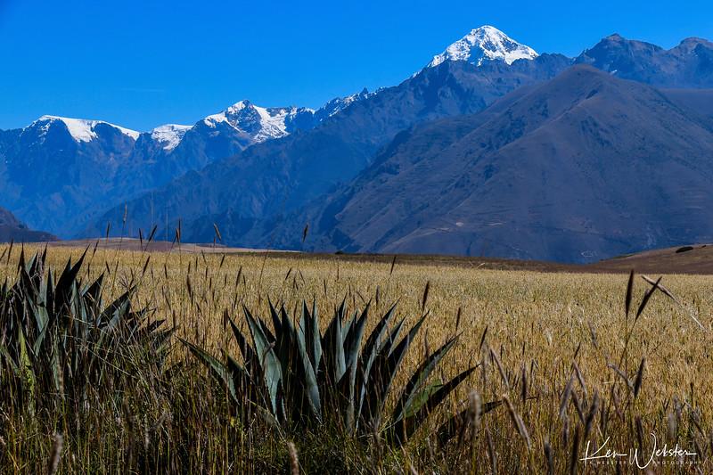 2018 Cusco - Sacred Valley-23.jpg