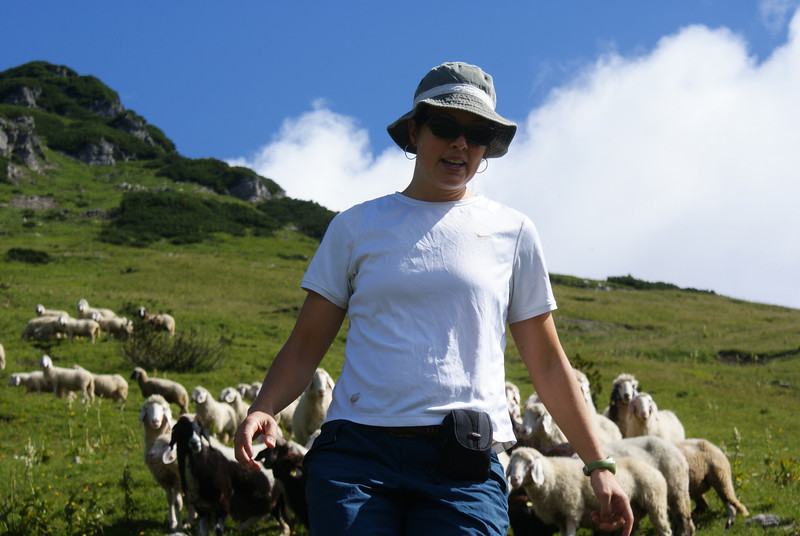 Here's Miss Showoff running from sheep.  Melanie went to go take a picture of the herd of sheep and got mobbed.  She came running down the mountain, tumbling boulders and crazy sheep on her heels.