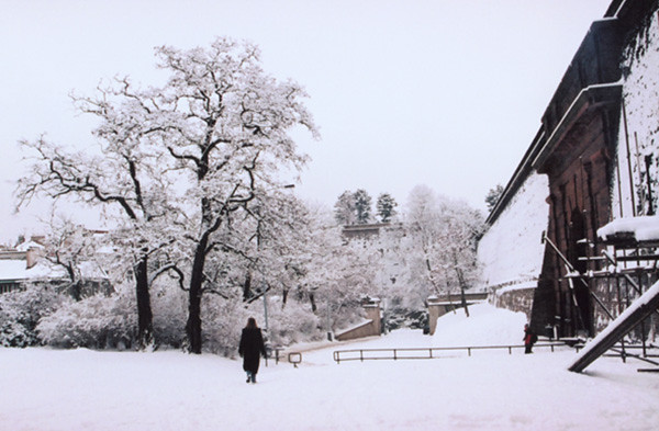 Snow -  Prague, Czech Republic