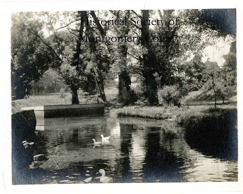. This photo from the Historical Society of Montgomery County shows Bubbling Spring Park, which was off Barren Hill Road in Spring Mill (Whitemarsh Township).  This picture is from the 1920s.
