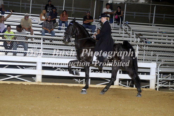 CLASS 6  AMATEUR OWNED & TRAINED   OPEN