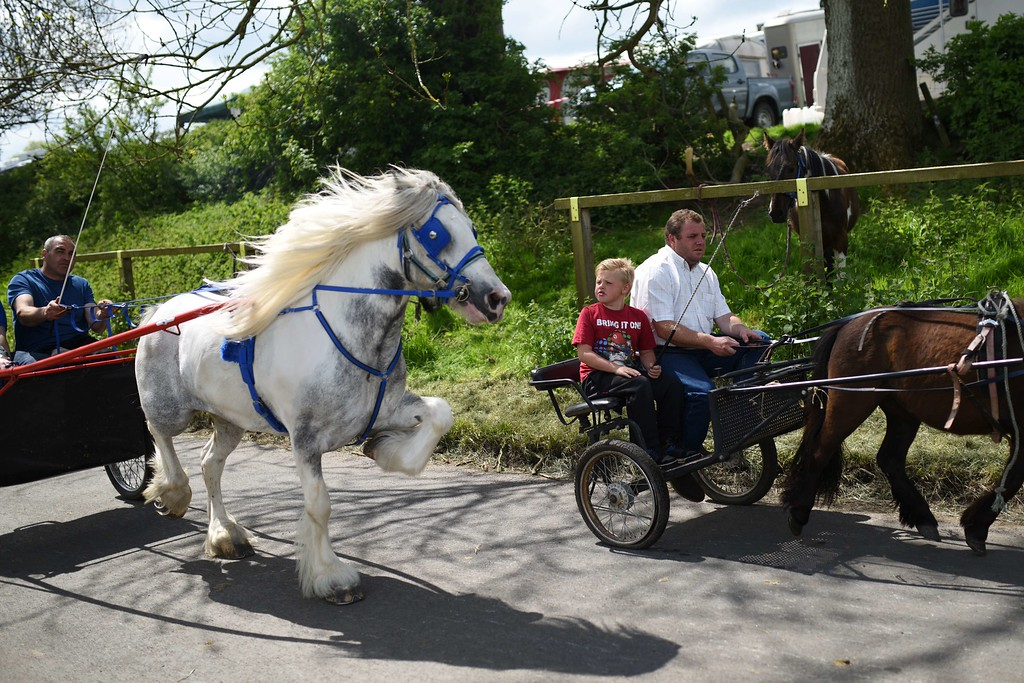 . People ride horse-drawn carriages along a road on the opening day of the annual Appleby Horse Fair, in the town of Appleby-in-Westmorland, North West England on June 4, 2015. The annual event attracts thousands of travelers from across Britain to gather and buy and sell horses. AFP PHOTO / OLI SCARFF/AFP/Getty Images