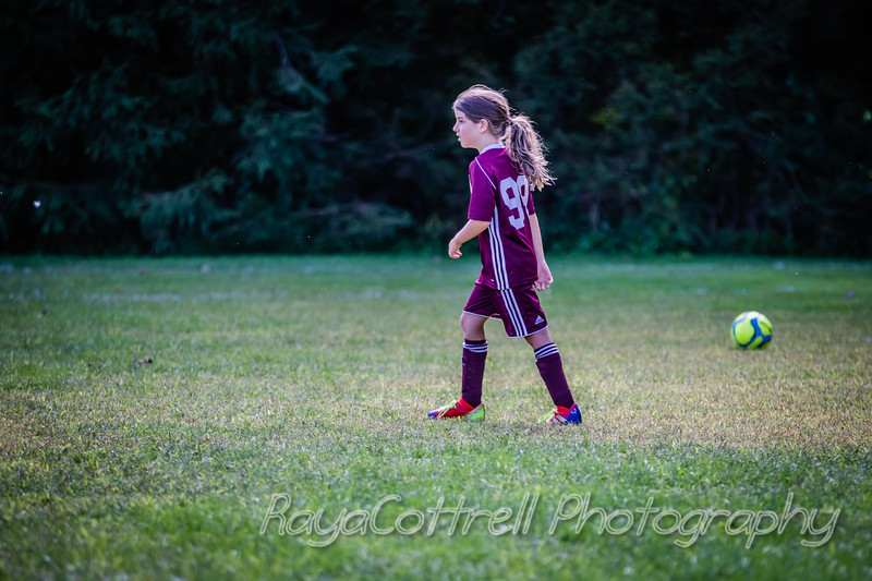 Scarsdale Tottenham vs. Mt.Pleasant Rovers 2019