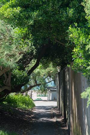 Janine Lowe Beach-265.jpg