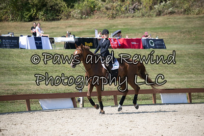 Fifth Over Fences Class