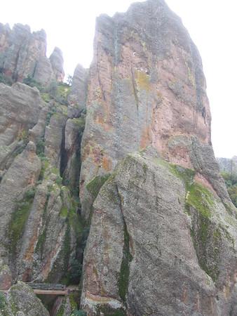 Pinnacles Jan 06