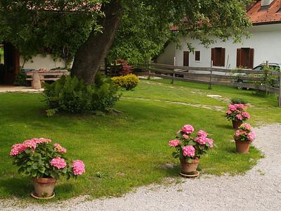 Kmetija odprtih vrat Javornik