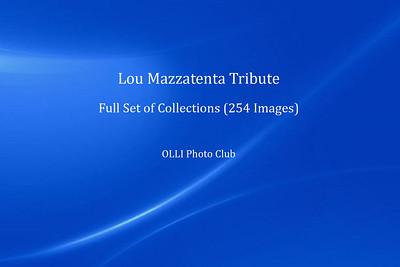 Unculled Photos - View Gallery/Video at Right
