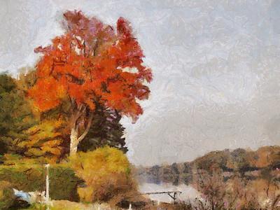 Wood Pond Lake Paintings