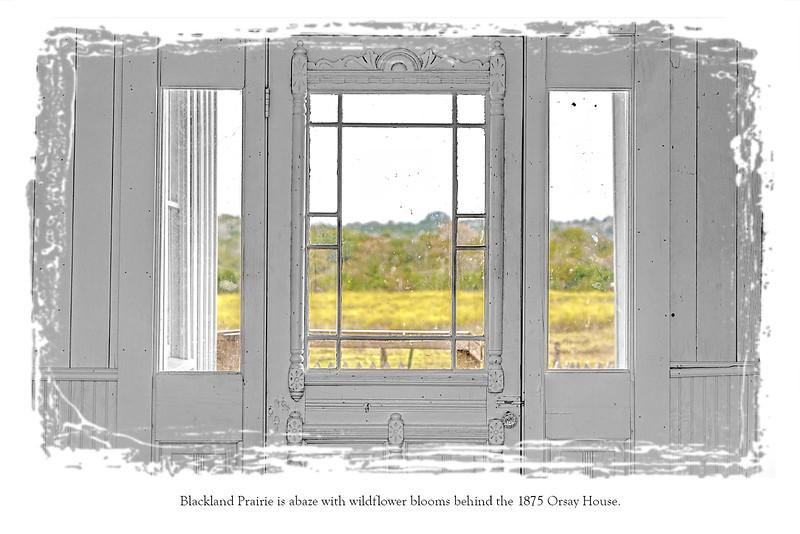 Postcard back Window.jpg