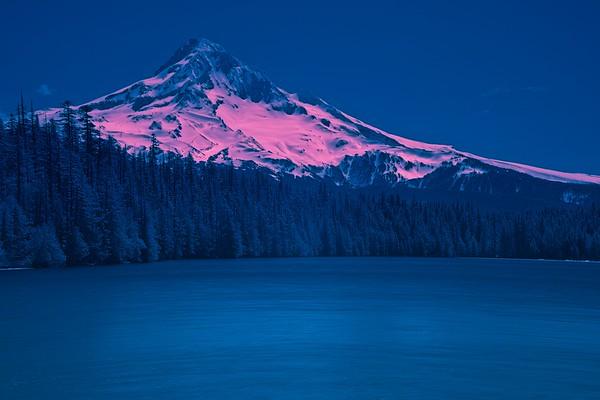 Infrared Pics!