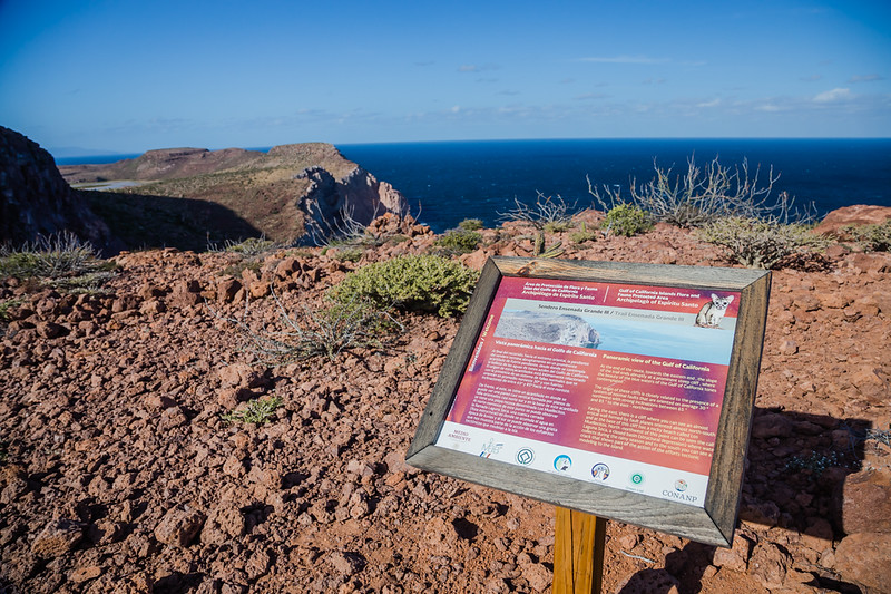 Lookout on Isla Partida