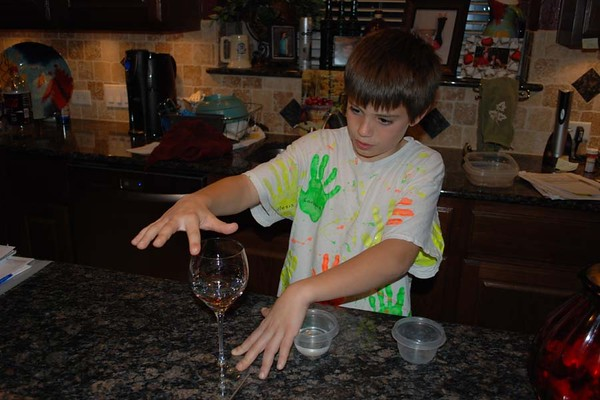 08 November 30   Reid - 5th Grade Science Project