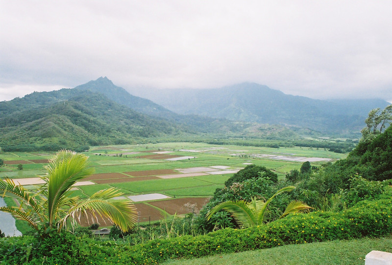 Hawaii-478.jpg