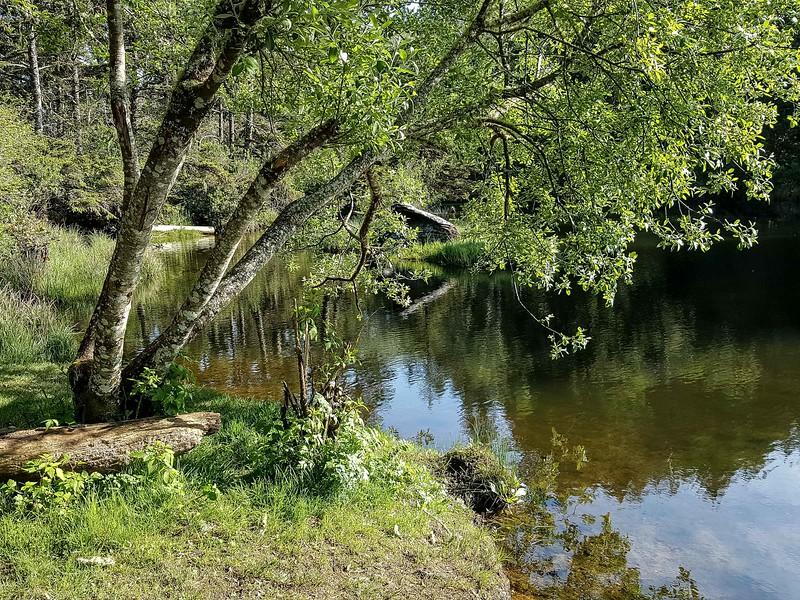 Beaver Creek Kayak (23 of 23).jpg