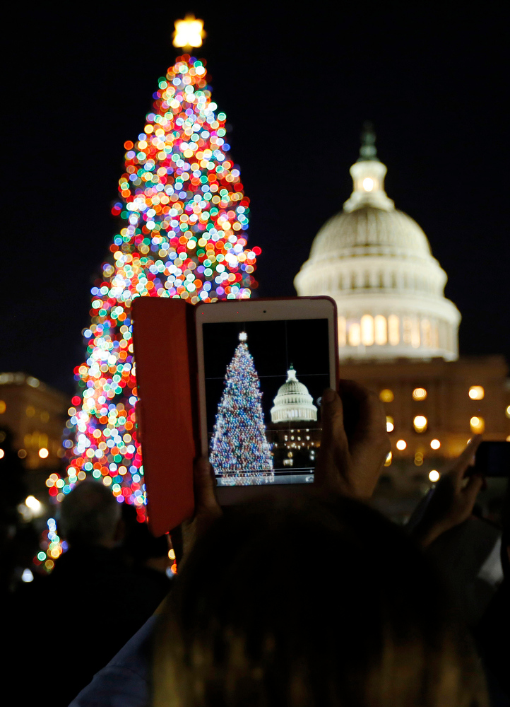 . A woman takes a picture with her iPad Mini during the official lighting ceremony of the U.S. Capitol Christmas Tree in Washington December 4, 2012.     REUTERS/Jason Reed
