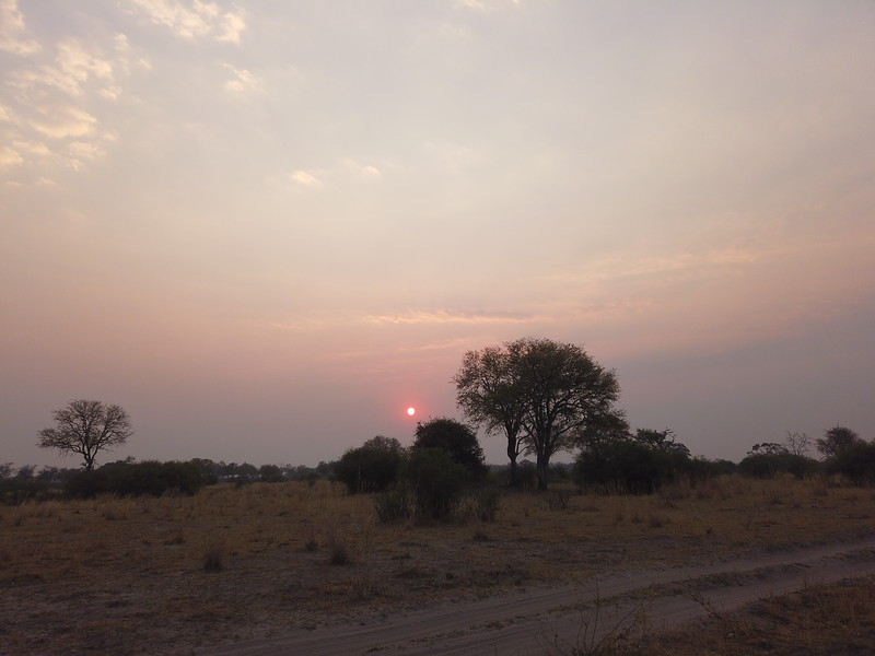 Sunset, Selinda Explorer Camp, Botswana