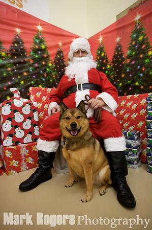 Muttville Santa Photos