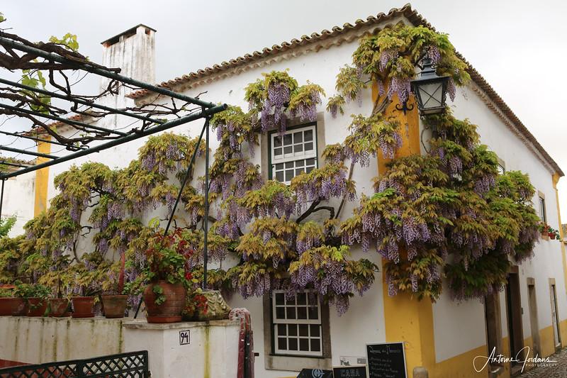 2012 Vacation Portugal211.jpg