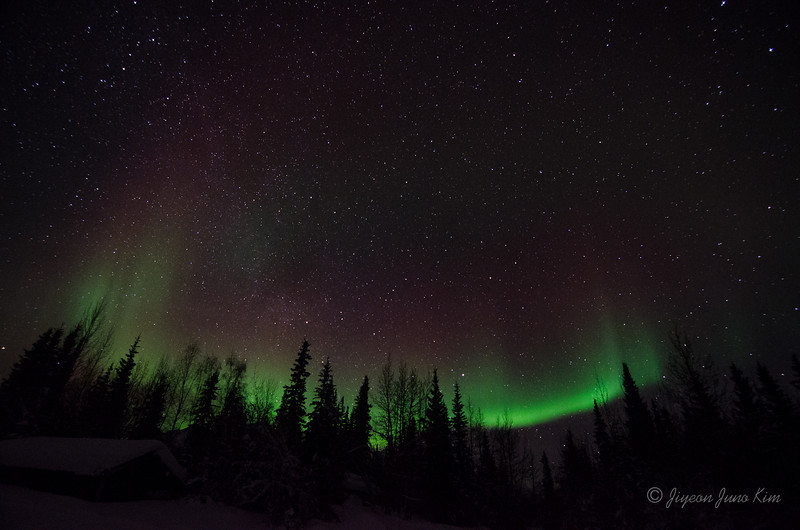 USA-Alaska-Wiseman-Aurora-2739.jpg