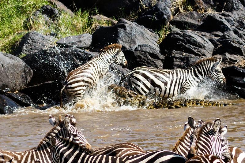 Kenya 2015-02615.jpg