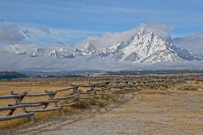Grand Fenceline