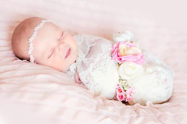 Hollenbeck Newborn