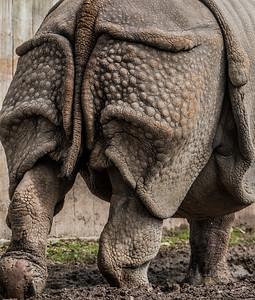 2017-03-29_Zoo