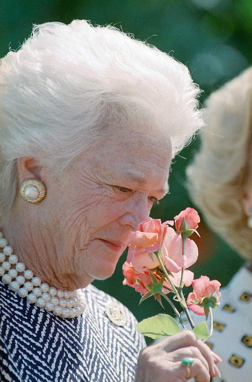 """. First lady Barbara Bush sniffs a rose during a tour of the gardens of Bagatelle in Paris, France, July 16, 1989. Mrs. Bush was later presented a bouquet of """"Barbara Bush"""" roses, the latest creation of rosieriste George Delbard, which he named for the U.S. First Lady. (AP Photo/Rick Bowmer)"""