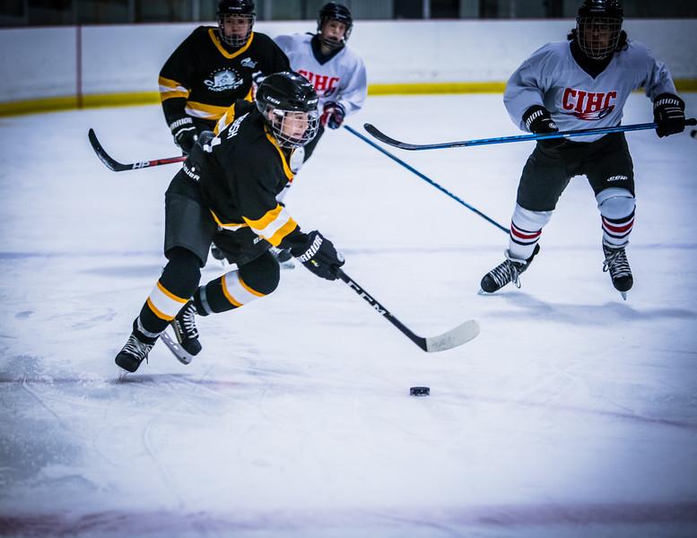 Bruins2-223.jpg