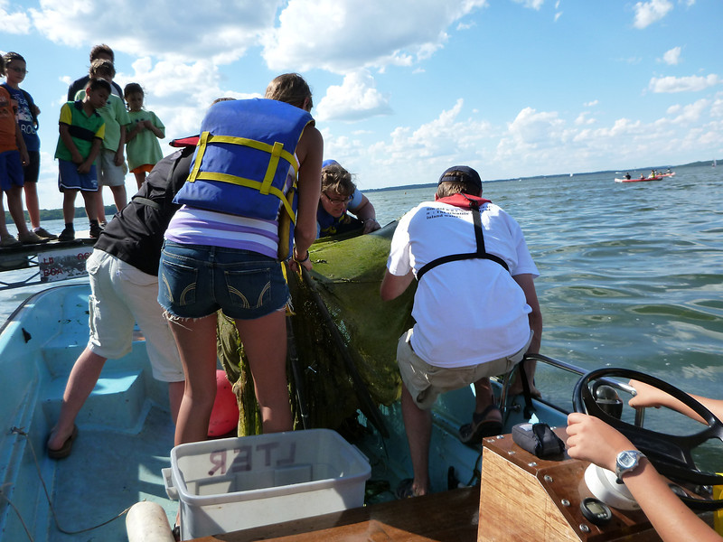 Toward the end of the afternoon, the Long-Term Ecological Research team (Ted Bier, Camille Bruhn and Nora O'Neil Hickey) pulled a Fyke Net in off of the Halser Lab pier as visitors looked on.
