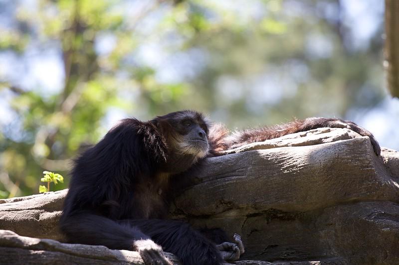 Zoo_Trip_12.jpg