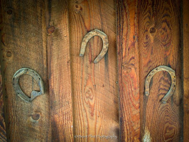 DF.3365 - horseshoes, Idaho City, ID.