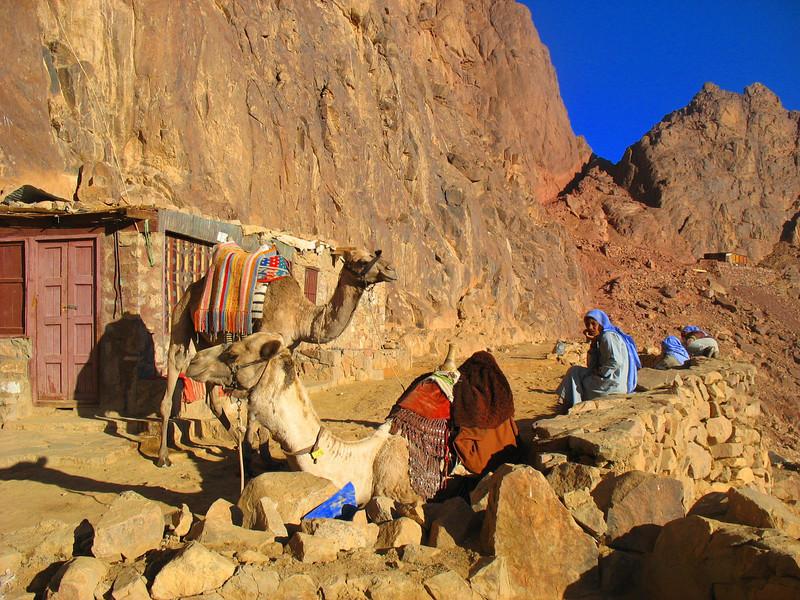 Egypt-704.jpg