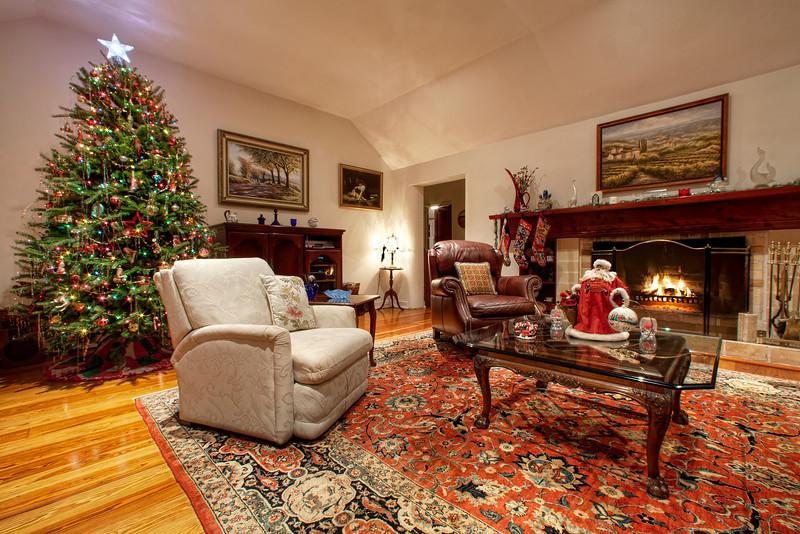 Christmas, Living Room.jpg