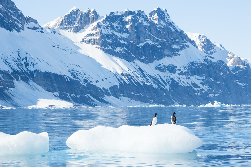 Svalbard - High Res-13.jpg
