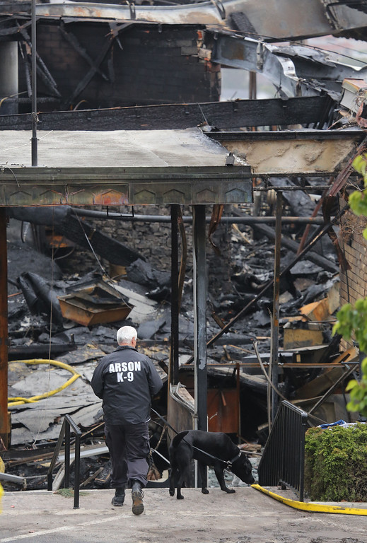 . An arson investigator leads his arson dog through the charred San Pedro Elks Lodge Wednesday April 16, 2014. The Lodge overlooking the Port of Los Angeles was destroyed in an early Tuesday morning fire. Chuck Bennett/Staff Photographer