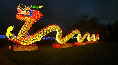 Dragon light in New Orleans