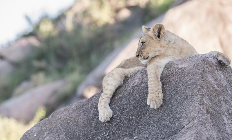 Tanzania_Feb_2018-541.jpg