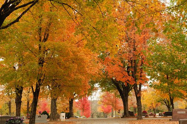 Arkansas Fall Oct 31 and Nov 1