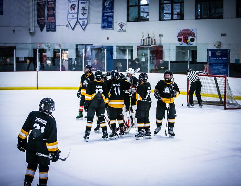 Bruins2-731.jpg