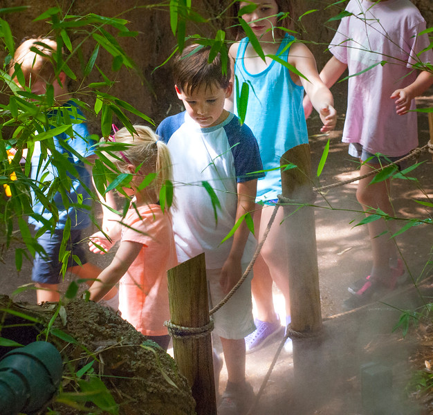 Zootopia Camp-31.jpg