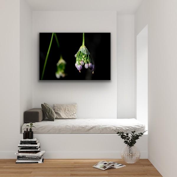 'Nodding Onion' Canvas Wrap